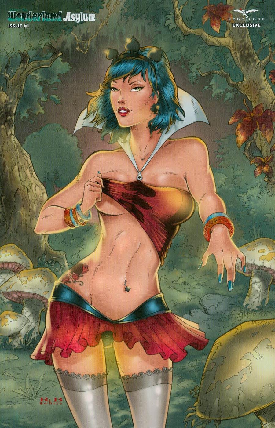 Grimm Fairy Tales Presents Wonderland Asylum #1 Cover E